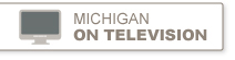 michigan in television
