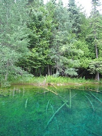 Kitchi-iti-kipi Springs