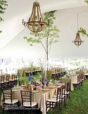 Say I Do to an Eco-Wedding
