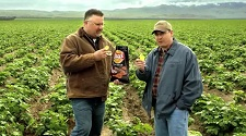 Walther Farms - Lays BarbecueCommercial