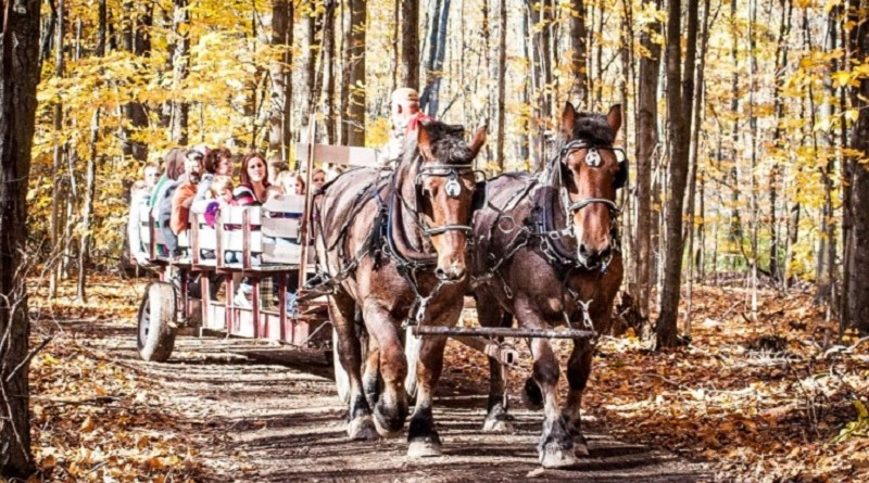Kent Harvest Trails