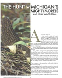 The Hunt for Michigan's Mighty Morels