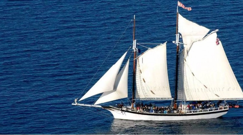 Explore the world of michigan craft beer aboard traverse for Craft shows in traverse city mi