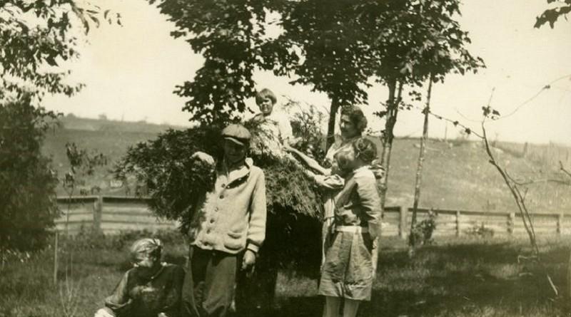 Hemingway Birthday Tree