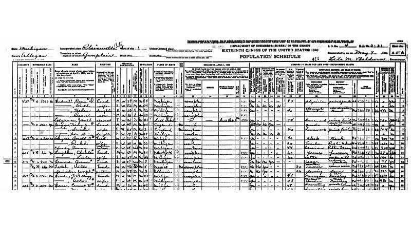 Plainwell Census